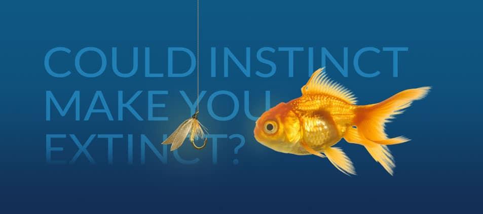 Website tagline example 2: Could instinct make you extinct?