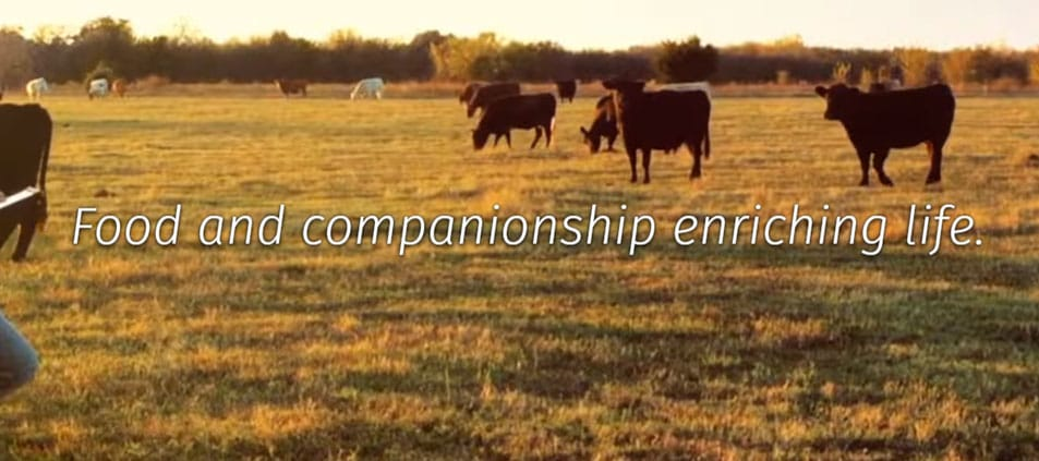 Website tagline example 2: Food and companionship enriching life